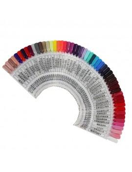 Evo Roue des couleurs