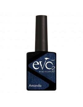 EVO 093 AMANDA